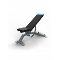 PROFORM Carbon Strenght Adjustable Bench